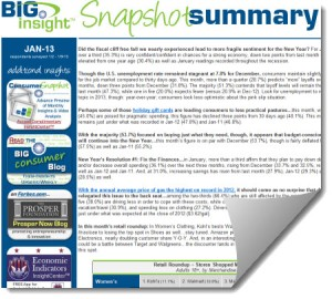 Snapshot Summary January 2013